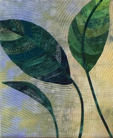 Leaf Study: Dieffenbacchia